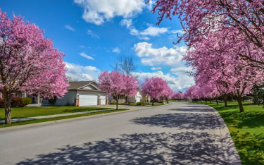 Spring Is Here: When Can Exterior Painting Start?