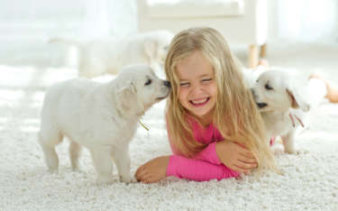 Interior Paint Tips for Homes with Kids and/or Pets
